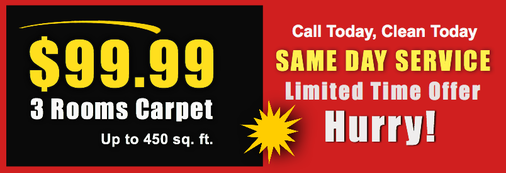 Carpet Cleaning Specials for Lowell MA area Homeowners. Call us at 1-800-479-1204 today.