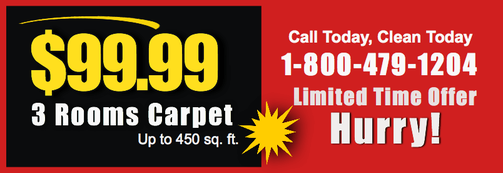 Carpet Cleaning Specials for Boston MA area Homeowners. Call us at 1-800-479-1204 today.